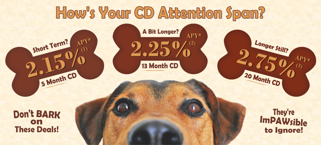 How's your CD attention span?